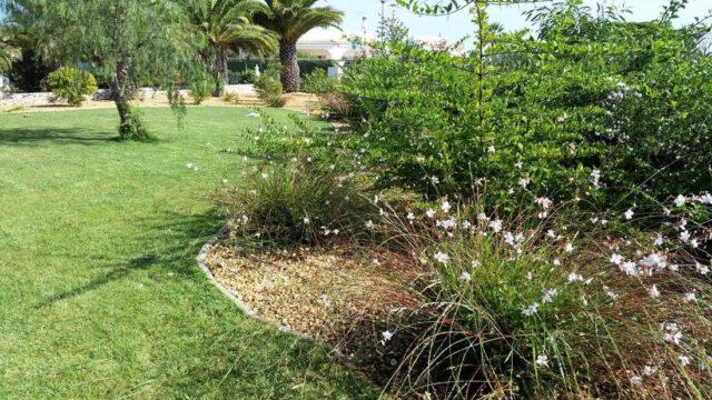 https://www.vitalgardens.com/wp-content/uploads/2020/03/Carvoeiro-Club-Garden-Restoration-04-640x360.jpg