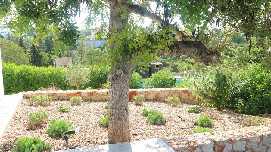 Dry Stone gardens 01