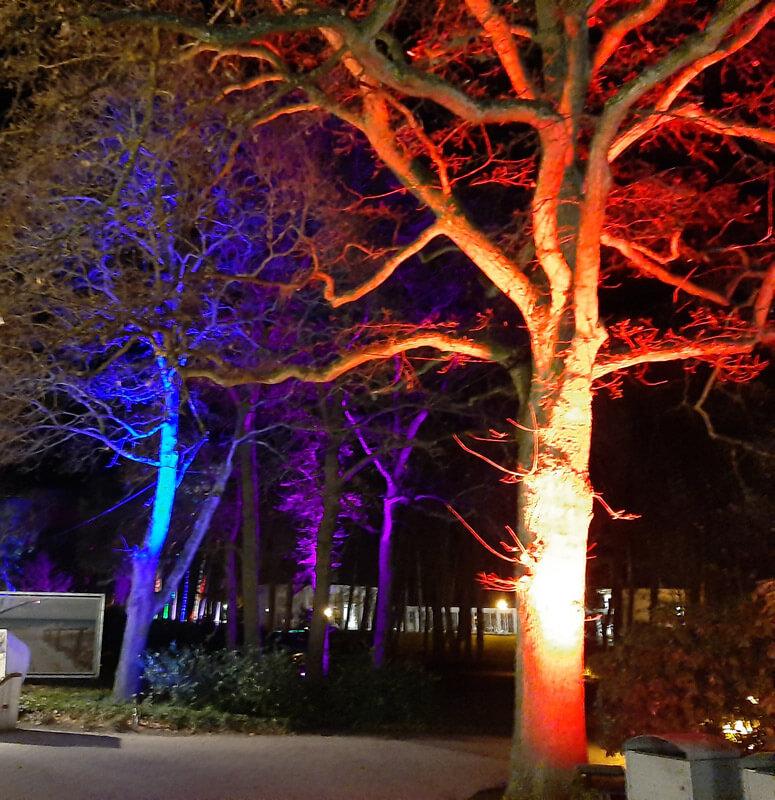 LED light garden systems 02