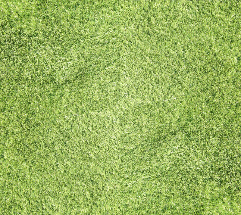 Services-Artifical-lawns