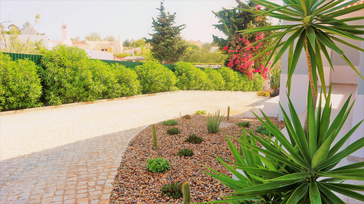 https://www.vitalgardens.com/wp-content/uploads/2020/03/Succulent-Garden-on-the-Stone-Terraces-10.jpg