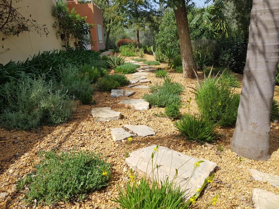 Intercultural gardens