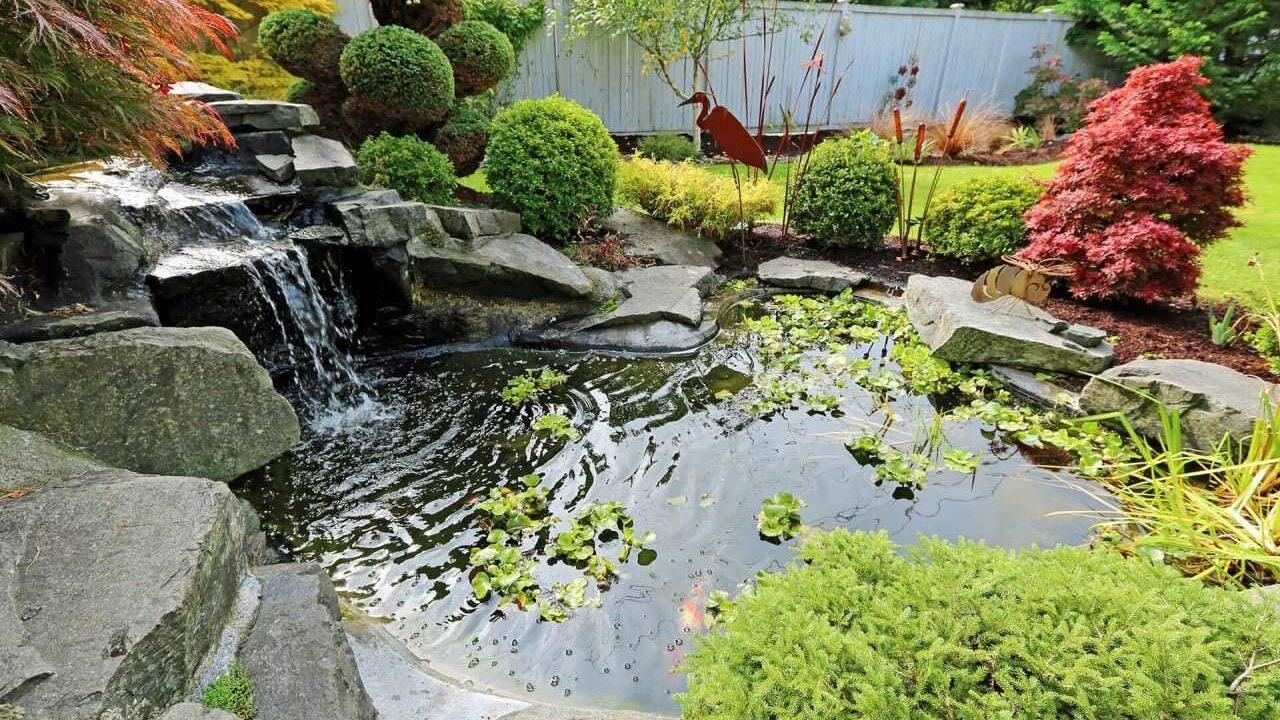 https://www.vitalgardens.com/wp-content/uploads/2020/06/Garden-pond-1280x720.jpeg